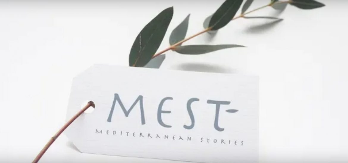 logo mest decor con ulivo