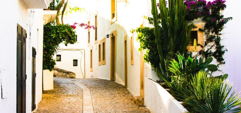 Ibiza strada paese piante