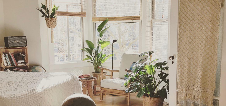 piante in camera da letto bianca e legno