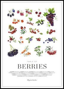 Stampe cucina frutti di bosco